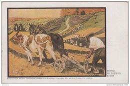 AK - Pflügender Bauer - Georgien - Feldpost 1917 - K.K. Tiroler Kaisermanöverreg. - Landwirtschaftl. Anbau