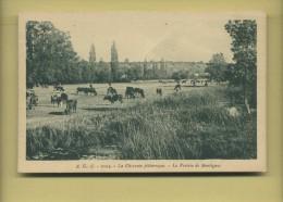 16 Montignac Charente La Prairie De Montignac ( Troupeau De Vaches ) - Non Classés