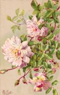 Rozen, Millot, Roses - Non Classés