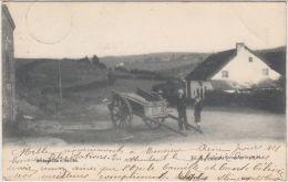 23699g  CHAMPS De CULTURE - CHARRETTE - Ortheuville Sur Ourthe - 1905 - Tenneville