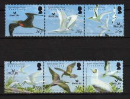 BRITISH INDIAN OCEAN TERRITORY. 2006 BIRDS // OISEAUX.UNUSED STAMPS - Birds