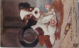 CPA  Illustrateur A E Kennedy A GLUESOME TALE (ca 963) /  Petit Chien / Post Card - Andere Zeichner