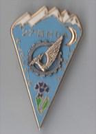 INSIGNE 27° BMDA BATAILLON DU MATERIEL DE LA DIVISION ALPINE, ALGERIE, LIBAN - DRAGO NOISIEL - Army