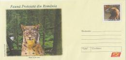 539FM- PROTECTED FAUNA, WILD CAT- LYNX, EAGLE, COVER STATIONERY, 2009, ROMANIA - Roofkatten