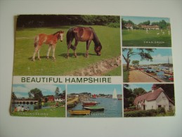 Beautiful Hampshire Multiview   REGNO UNITO     CIRCULE' - Altri