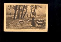 Peinture Tableau : Dans La Champagne Bergère Moutons Troupeau Sheep ( Publicité Biscuits Vignals Lyon ) - Paintings