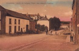 MESSANCY : Route De Longwy, Pens. Des Soeurs Francisc - Messancy