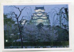 JAPAN - AK 212319 Himeji Castle - An Evening View During The Cherry Blossom Season - Altri