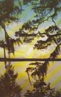 Watere Sunset Camden South Carolina