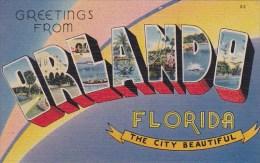 Florida Orlando Greetings From Orlando The City Beautiful