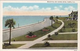 Florida Tampa Beautiful Bay Shore Drive