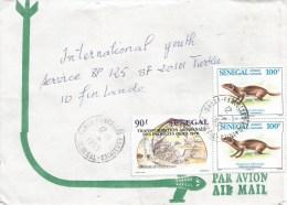 Senegal 1995 Dakar Sifting Shells Egyptian Mongoose (Herpestes Ichneumon) Cover - Senegal (1960-...)