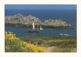 35 - CANCALE - La Bisquine Devant La Pointe Du Grouin. Format: 12x17cm - Cancale