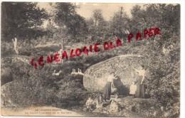 79 -  LA CHAPELLE SEGUIN - LA ROCHE BRANLANTE DE LA MORLIERE - Champdeniers Saint Denis