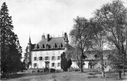 63 - Neuville - ** Château Des Moulins ** - Cpsm - Bon Etat - Unclassified