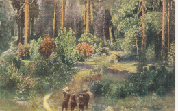 LOS ANGELES, California, 1900-1910's; The National Forest of The Sierra Nevada, Forest Section Of The California Expo