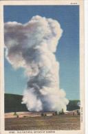 Wyoming Old Faithful Geyser At Sunrise 1936 Curteich - Yellowstone