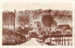 MONTROEUL-au-BOIS - La Masse Du Sanctuaire Tranche Sur La Toile De Fond De La Colline Boisée ! (Le Manuel). - Frasnes-lez-Anvaing
