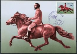 1982 Iceland Horse Maxicard - Cartoline Maximum