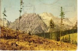 Slovakia, Tatra National Park, Kopky, Vysoka, Zlobiva, 1963 Used Postcard [14365] - Slovakia
