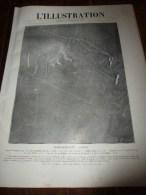1917 ;La CLOCHE;BIG WAR PHOTO;Brescia,Verone,Piave,Moulin Della Sega;Mariés FRANCO-US Vitrimont;CANADA En Nos Forêts - Zeitungen
