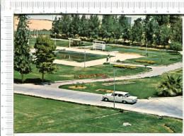 RIYADH   -  Collège  Of  Agriculture - Véhicule Ancien - Arabie Saoudite