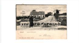 Genk  Genck 2 CP  Edit Delée   Dorp Kerk  Hotel  Gilkemans   1904      Schapenhoedster  1904 - Genk