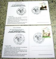 G1 ITALIA ANNULLO CANCEL - 2005 GATTINARA VERCELLI 2 CARD TAMPASTON GRANDINE UVA VITE WINE METEO EMIGRAZIONE - Protección Del Medio Ambiente Y Del Clima