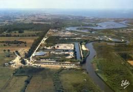 Le Teich - Le Parc Ornithologique, Vue D'ensemble Au Fond Bassin Arcachon - France