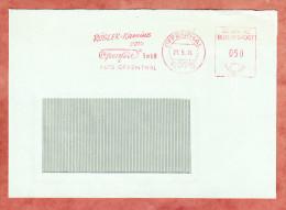 Brief, Absenderfreistempel, Roesler Kamine Openfire, 50 Pfg, Offenthal 1974 (69277) - [7] République Fédérale