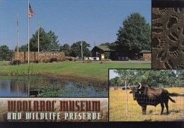 Woolaroc Museum & Wildlife Preserve Tempe Arizona - Tempe