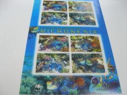 Micronesia-Fish-Marine Life-WWF - Fische
