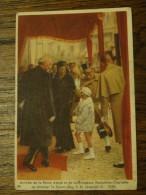 Cote D´or  Série Reine Astrid N°14 - Chocolat