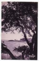 Cpa 85 - Ile De Noirmoutier - Le Bois De La Chaize - Ile De Noirmoutier