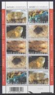 Belgium 2003 Minerals 5v In Sheetlet Of 2x5v ** Mnh (18749) - Mineralen