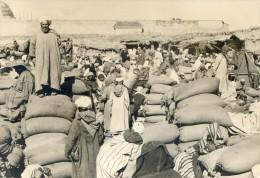 Marrakech - Le Souk Aux Grains - Marrakech