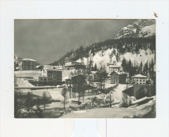 SAPPADA M.1250,panorama Invernale-NV - Belluno