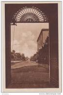 AK - Vatican - Giardini Viale Della Zitella 1936 - Vatikanstadt