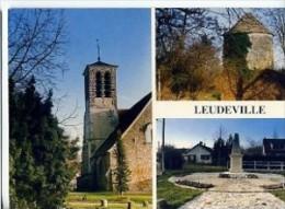 CP91051 - LEUDEVILLE - Carte Souvenir, Divers Aspects - France