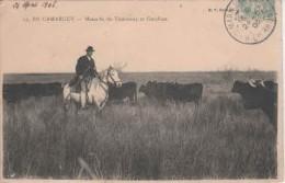 """13- 80325  -  CAMARGUE     ///    SAINTES   MARIES   DE   LA   MER     """"""""     LA MANADE   En 1900 - Saintes Maries De La Mer"""