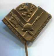 Army, Military, Czech Republic,  Vintage Pin, Badge, 30 X 25 Mm - Militaria