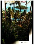 Guyane Ile Du Saluts - Guyane