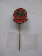Pin Jamin (GA03641) - Noël
