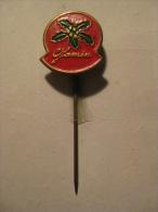 Pin Jamin (GA04120) - Noël