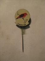 Pin Tijgervink (GA04671) - Animaux
