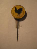 Pin De Zwarte Kip (GA04916) - Dieren