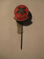 Pin Jamin (GA04988) - Noël