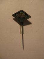 Pin Schildpad (GA05387) - Dieren