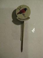 Pin Zwartkopnon (GA05580) - Animaux