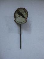 Pin Wielewaal (GA5905) - Animaux